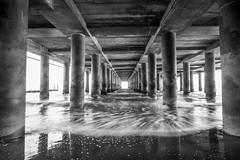 steel pier black (primemundo) Tags: monochrome steelpier boardwalk atlanticcity waves ocean motion columns sand water beach blackandwhite concrete symmetry lines atlanticocean undertheboardwalk