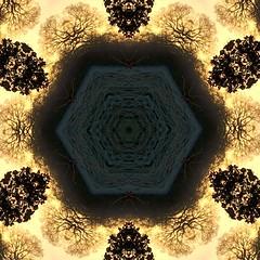 Winter Silhouettes (Heaven`s Gate (John)) Tags: kaleidoscopic landscape johndalkin heavensgatejohn dickensheath solihull england silhouette trees nature reserve art crative abstract design pattern sunrise