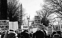 2017.02.04 No Muslim Ban 2, Washington, DC USA 00404