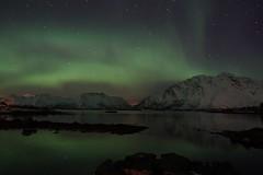 Aurora Borealis (clemensgilles) Tags: lofoten nordland nordlichter norwegen auroraborealis nordlys norway polar lights northern night aurora borealis