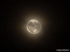 Ilargia (neguetxea) Tags: sky moon composite night noche country olympus luna cielo lightning rayo pays basque vasco pais rayos zerua euskal herria gaua ilargia mugarra tximista ekaitza putrea