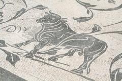 Alcuni Mitrei di Ostia_077