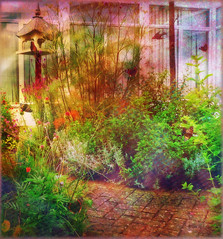 Therapy Garden (virtually_supine popping in and out) Tags: flowers birds photomanipulation garden creative butterflies textures restore layers birdtable colourful digitalartwork oxforduk picasa3 photoshopelements9 picasaeffectorton kreativepeoplecontest42inthegarden