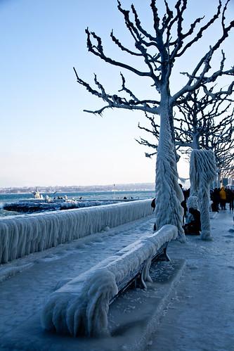 Ice0212-4628