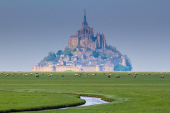 Classic view from Normandy and Brittany (Adrien Marc (not commenting)) Tags: sea brittany sheep normandy montsaintmichel universeofphotography
