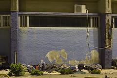 Lesbos_2015-5265 (kentkessinger) Tags: sea afghanistan kara turkey island kent refugee rubber greece human journey syria immigration lesbos crisis iraqi unhcr syrian response smugglers smuggling ayvalik migrant tepe 2015 kessinger dhingys