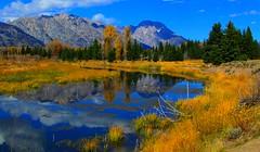 Grand Teton National Park (udbluehens) Tags: grandtetonnationalpark mtmoran schwabacherslanding grandtetonfallcolors