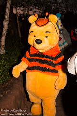Winnie the Pooh (Fantasyland)