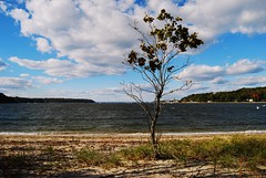 View towards Long Island Sound from Cold Spring Harbor, New York (Paul Anthony Moore) Tags: newyork longisland longislandsound coldspringharbor