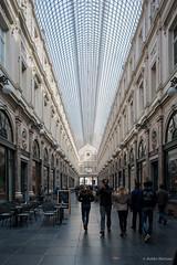 Galerie de la Reine-03 (Julin Meizoso Garca) Tags: brussels building glass architecture photoshop arquitectura belgium belgique bruxelles bruselas brussel blgica cristaleras cameraraw galeriesroyalessainthubert nikond700 nikkor28mmf35pc galeriedelareine03