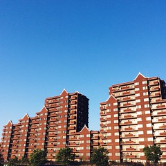 (linhchi_) Tags: city beautiful japan tokyo nhtbn p nht
