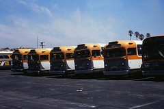 009 RTD Div 6 Ocean Park 19800720 AKW (Metro Transportation Library and Archive) Tags: venice santamonica scrtd division6 alanweeks