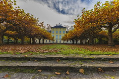 Haus Schnwasser (Rolf Piepenbring) Tags: autumn herbst krefeld platanus platane platanen krefeldoppum lehrerseminar