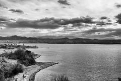 grey walk (nosha) Tags: arizona bw lake water monochrome beautiful beauty river landscape az coloradoriver lakehavasu