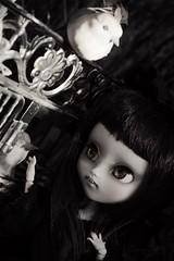 RoseMary  (Loony-Doll) Tags: doll eyelashes vampire stock makeup full corps wig mio groove pullip kit custom fc oiseau custo sculpt poupe eyechips customise makeitown