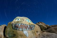 Nightmare Rock Star Trails (Ken Lee Photography) Tags: light luz nature pine night painting de photography long exposure desert alabama ken hills lee nocturna lone pintura exposicion larga facerock fotografianocturna nightmarerock