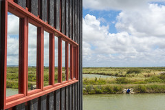 Reflection of a landscape (Jan van der Wolf) Tags: map143480v windows spiegeling reflection red redrule perspective perspectief landscape landschap moeras swamp marsh lines composition compositie