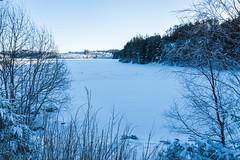 Landscape (torlind54) Tags: haugesund 2016 tormod lindøe rogaland landscape sky blue snow winter forest trees djupadalen water