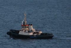 The tug in the Baltic Sea. (irio.jyske) Tags: baltic sea tug alone job winter cold waves sigma canon