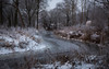 curved ice-creek - have a great sunday! (Florian Grundstein) Tags: natur naab fluss flussufer altwasser bäume oberpfalz eis vereist gefroren winter schnee