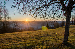 chenu (harmishhk) Tags: promenadedesechelles sun rochehaut sunset belgium hiking fog hills vista tree field