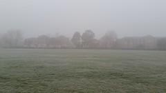 Stepney Green morning mist Jan 2017 (Carol B London) Tags: mist stepney stepneygreen e1 londone1 towerhamlets lbth