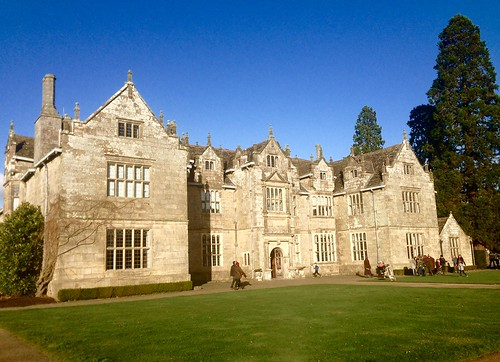 A Stroll in Wakehurst Place