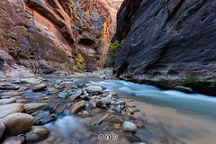 Lower Narrows in the Morning (au_ears) Tags: trees utah fallcolors flowingwater water zion 2016 narrows virginriver reflectedlight
