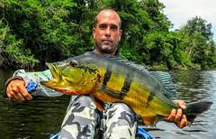 Kalua-Demeni-2016 (6)