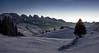 Toggenburg (Martin Häfeli Photography) Tags: churfirsten toggenburg chäserrugg hinterrugg schibenstoll zuestoll brisi frümsel selun unterwasser wildhaus gamplüt switzerland evening bluehour blue hour snow mountains mountain tree hut hütte alphütte night valley schnee winter