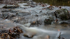 2017-01-17 Rivelin-7391.jpg (Elf Call) Tags: nikon endcliffepark river yorkshire water stream 18105 sheffield steppingstones waterfall d7200 blurred