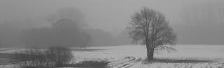 Januar im Nebel