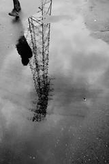 reflection b&w (matwolf) Tags: reflection reflections reflektionen reflektion spiegelung monochrome mono bw blackandwhite blackwhite noiretblanc ngc noirblanc noir blancoynegro enblancoynegro
