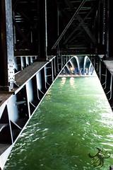 Pont Alexandre III (Thierry Poupon) Tags: paris pont pontalexandreiii seine acier métal iledefrance france fr bridge under green water river perspective curve steel arch