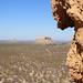 DSC07186 - NAMIBIA 2013