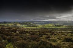 Shropshire Hills (Eccentric Exposures) Tags: landscape grass sunrise hills sun nikon d610 2485 hdr longexposure wideangle shropshire stiperstone hiking