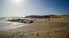 Paracas-34 (Marco Lencioni) Tags: paracas peru perù quad ocean pacific pacifico oceano pellicano birds southamerica sony sonya7 fe35mmf28zazeisssonnart fe55mmf18zazeisssonnart konicaminolta1735mmf2845 tour travel trip gringotrail