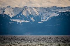 20170304_lake constance_N812549.jpg