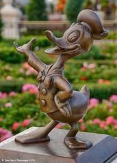 The Donald (jbwolffiv) Tags: donaldduck hub mainstreet mainstreetusa magickingdom disney disneyworld disneywdw d7200 waltdisneyworld wdw wolff johnwolff nikon
