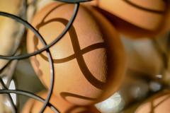 Egg~ Macro Monday (Karen McQuilkin) Tags: macromondays agoodegg basket all eggs one detained wire karenmcquilkin kitchen foodphoto theme~eggmarch62017 explore