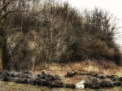 Stones at the hill (yve_all) Tags: bäume trees landschaft landscape licht light colours farben natur nature blickwinkel view