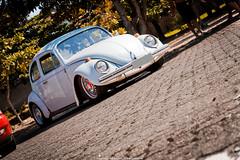 Volkswagen Beetle (Jeferson Felix D.) Tags: camera brazil rio brasil riodejaneiro canon volkswagen de photography eos photo foto janeiro beetle fotografia vwbeetle fusca volkswagenbeetle 18135mm 60d worldcars volkswagenfusca vwfusca canoneos60d