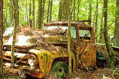 Ole Yeller (Dave Reasons) Tags: white georgia 22 daylight rust unitedstates antique overcast 66 september 98 99 material 40 junkyard 135 37 friday 209 39 204 142 228 38 163 139 136 133 174 217 113 134 137 232 toasted 216 177 208 229 234 166 226 231 138 227 176 233 236 junkers earlyfall oldcarcity 263 roached