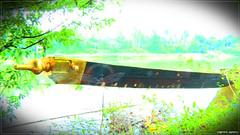 vlcsnap-2015-09-30-18h26m31s812 (|| Nellickal Palliyodam ||) Tags: race temple boat snake kerala aranmula parthasarathy vallamkali parthan palliyodam poovathur nellickal