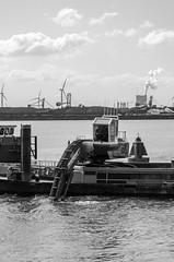 Gründeln (-BigM-) Tags: holland netherlands port work photography rotterdam ship fotografie harbour nl hafen arbeit schiff digger niederlande excavator bagger bigm