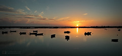 Sereno atardecer (Vitor S. Cruz) Tags: sunset water água faro boat dusk pôrdosol ocaso riaformosa lancha bote entardecer embarcação