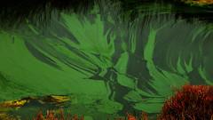 Seaweed Drift (offroadsound) Tags: seaweed green portugal faro algarve riaformosa drift algen greenfire ilhadofaro