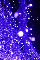 IMG_1222 (jumppoint5) Tags: lights bokeh blue kamakura enoshima japan christmas contrast