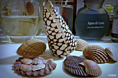 Conchas perfumadas (Franco D´Albao) Tags: francodalbao dalbao lumix conchas shells perfumes perfums aseo bathroom cuartodebaño aguadeluna bodegón stilllife