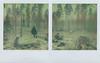 Listen to the silence (Maija Karisma) Tags: polaroid instant pola littlebitbetterscan sx70 tzartistic expiredfilm nature diptych